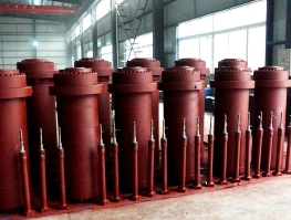 大型清洗系统液压缸